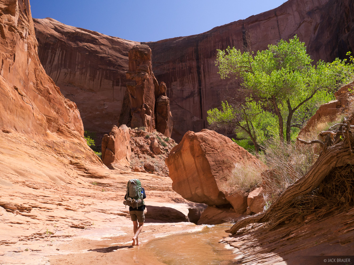 Coyote Gulch, Escalante, Utah, hiking, Glen Canyon National Recreation Area, photo