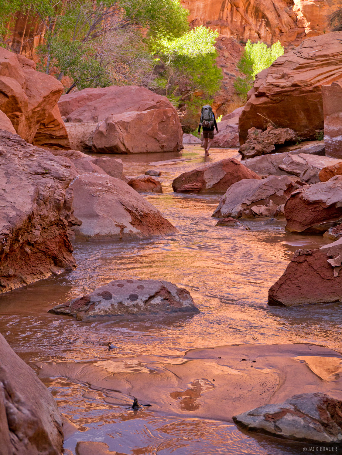 Coyote Gulch, Escalante, Utah, hiking, Grand Staircase-Escalante National Monument, photo