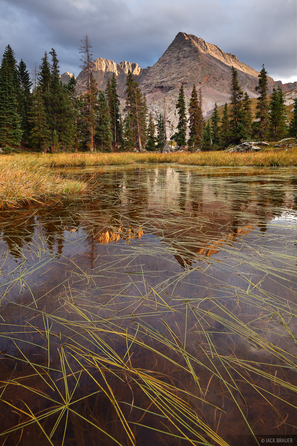 Trinity Peaks reflect in a grass-filled pond in the Weminuche Wilderness.