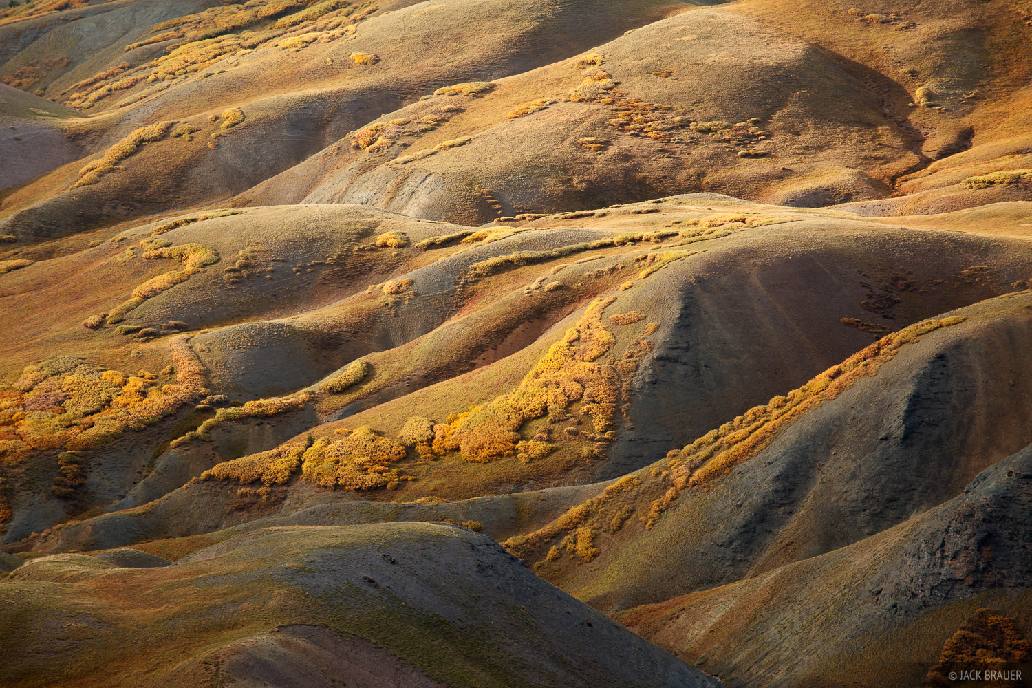 Stony Pass, autumn, tundra, San Juan Mountains, Colorado, September, abstract, photo