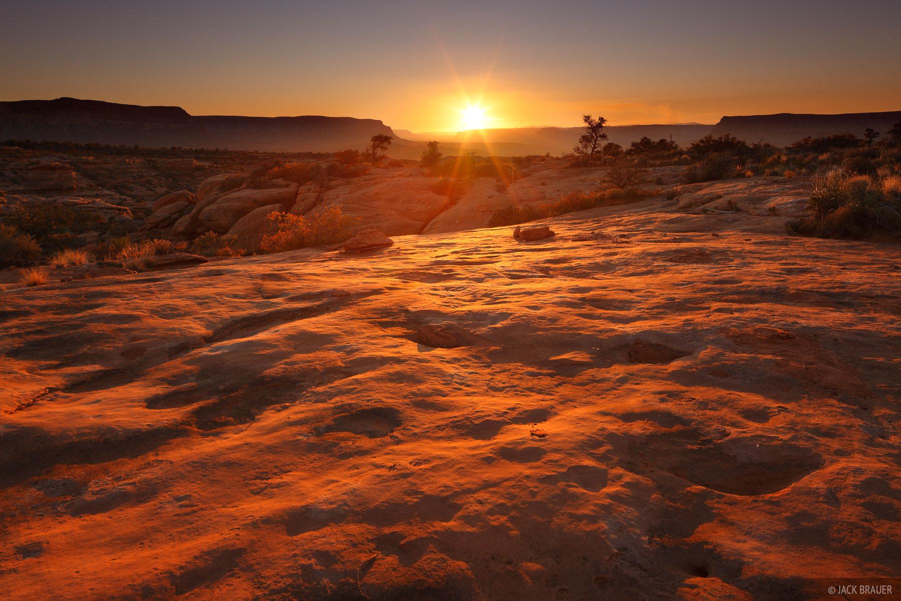 Grand Canyon, Arizona, Esplanade, sunset, Monument Point, photo