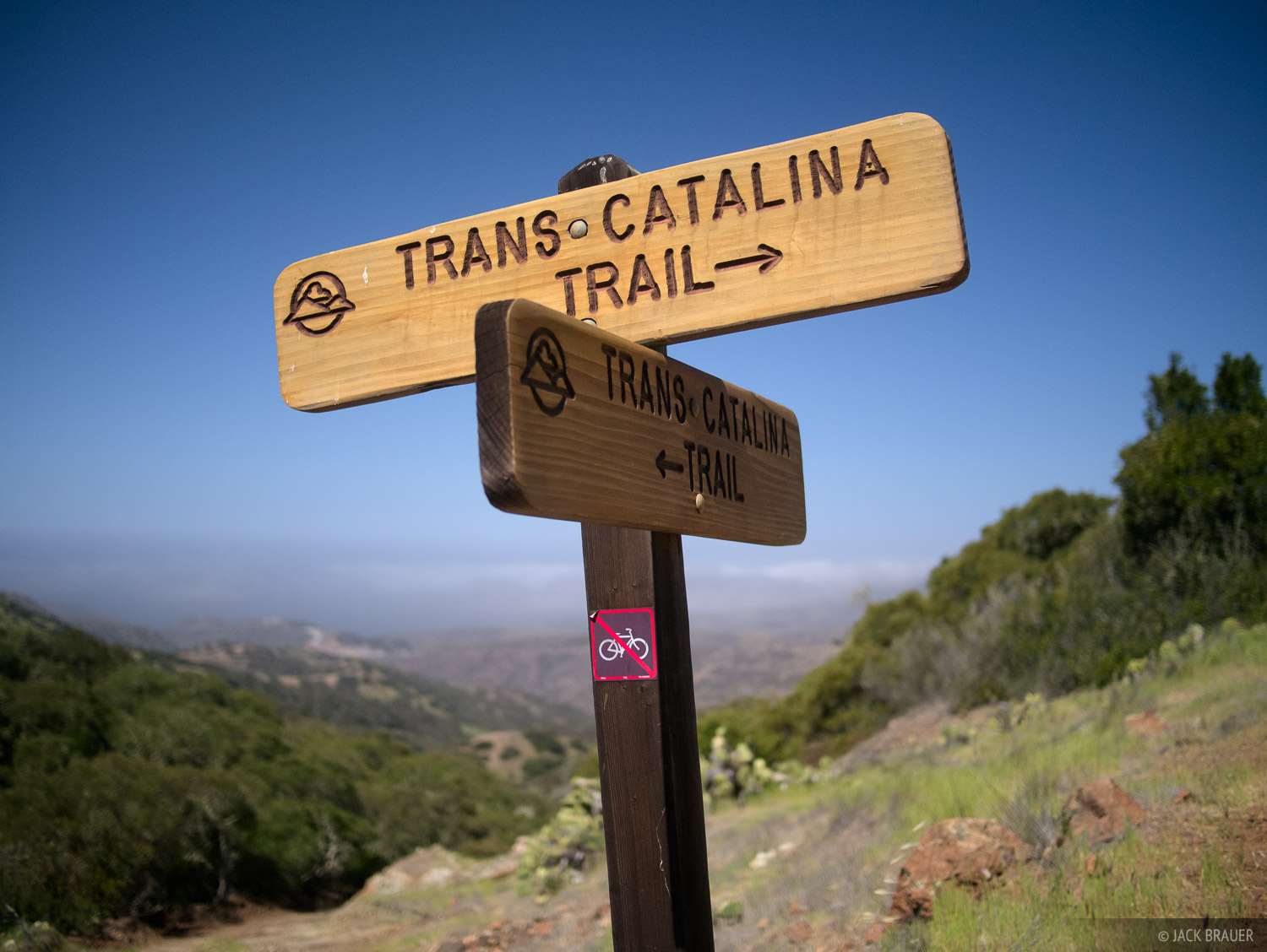 Trans Catalina Trail, Catalina Island, California, photo