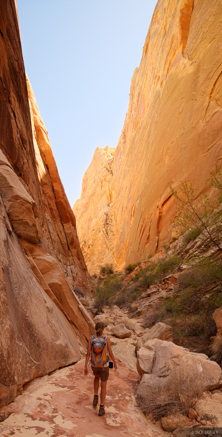 Surprise Canyon, Capitol Reef, hiking, April, photo