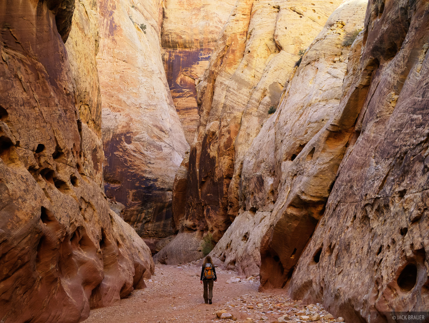 Grand Wash, Capitol Reef, Utah, hiking, april, photo