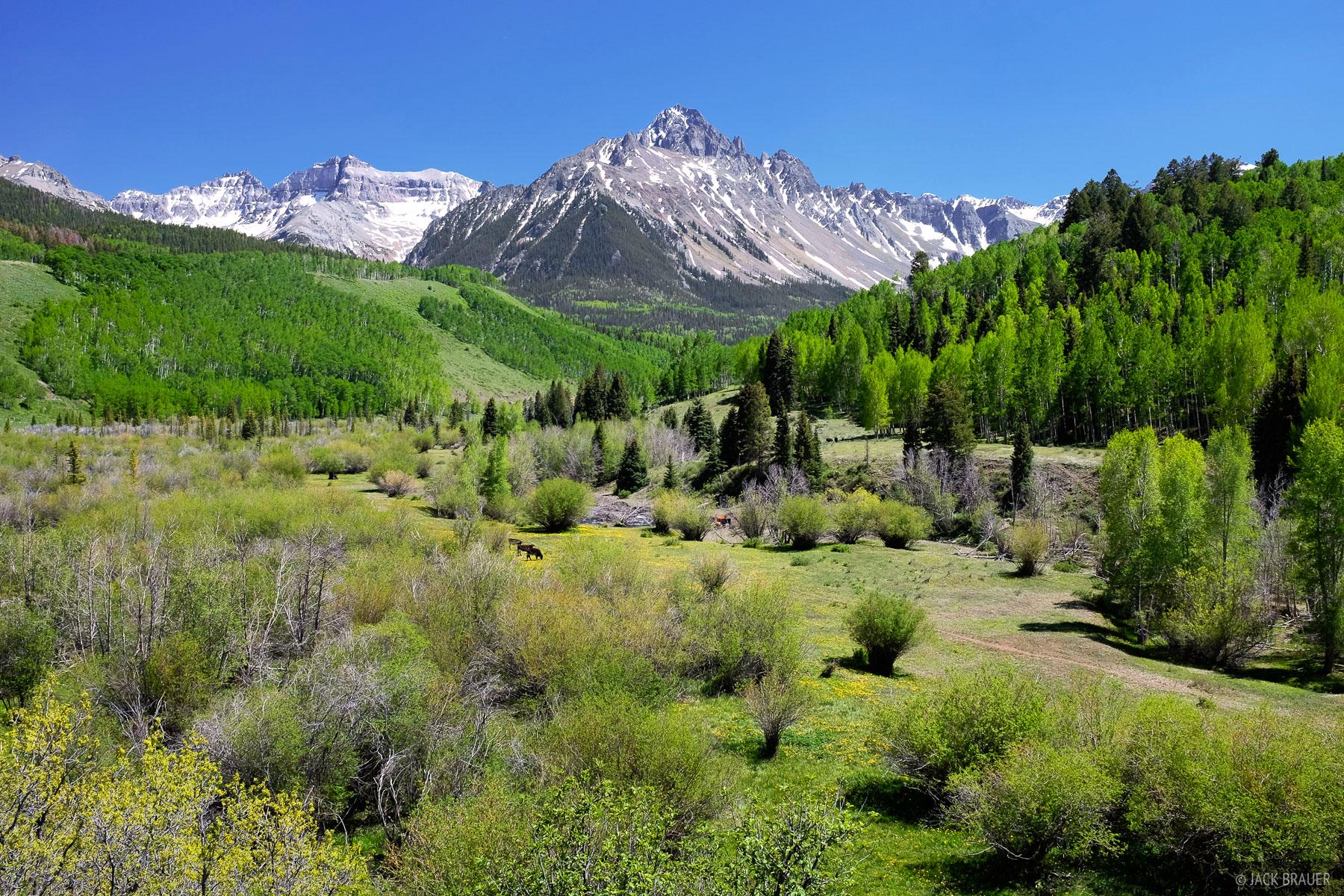 Mt. Sneffels, San Juan Mountains, spring, June, green, CR7, photo
