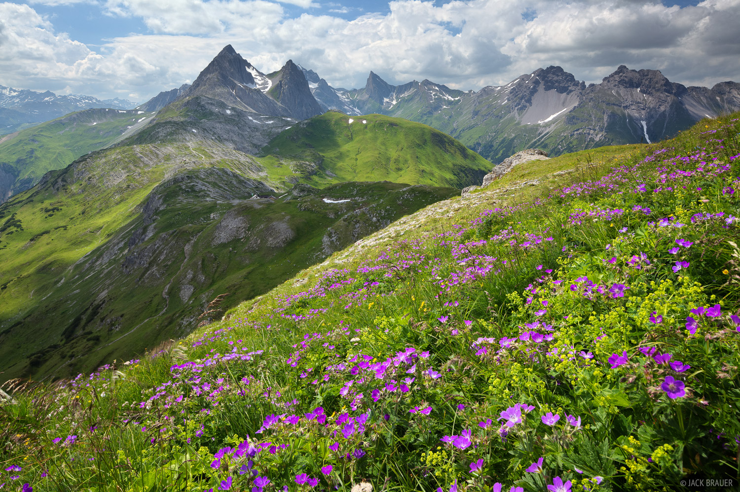 Lechtal Alps, Austria, Leutkircher, meadows, Weisschrofenspitze, Alps, photo