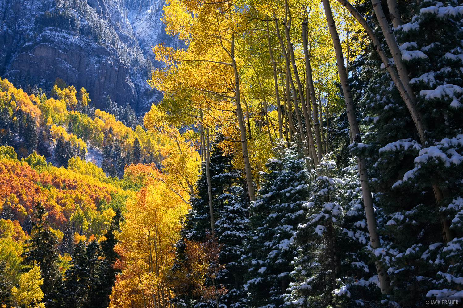 San Juan Mountains, Colorado, autumn, aspens, photo