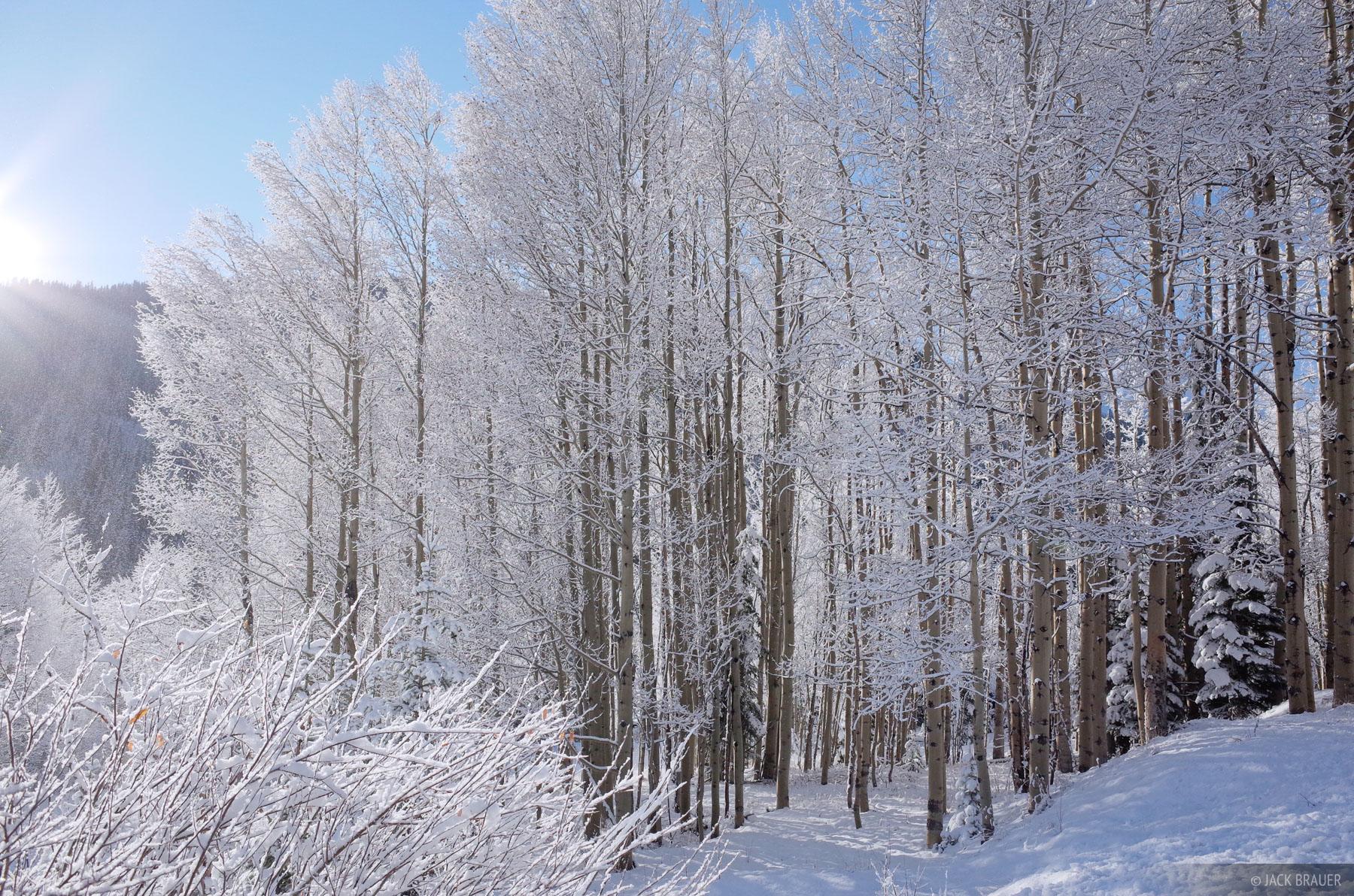 San Juan Mountains, Colorado, aspens, winter, skiing, photo