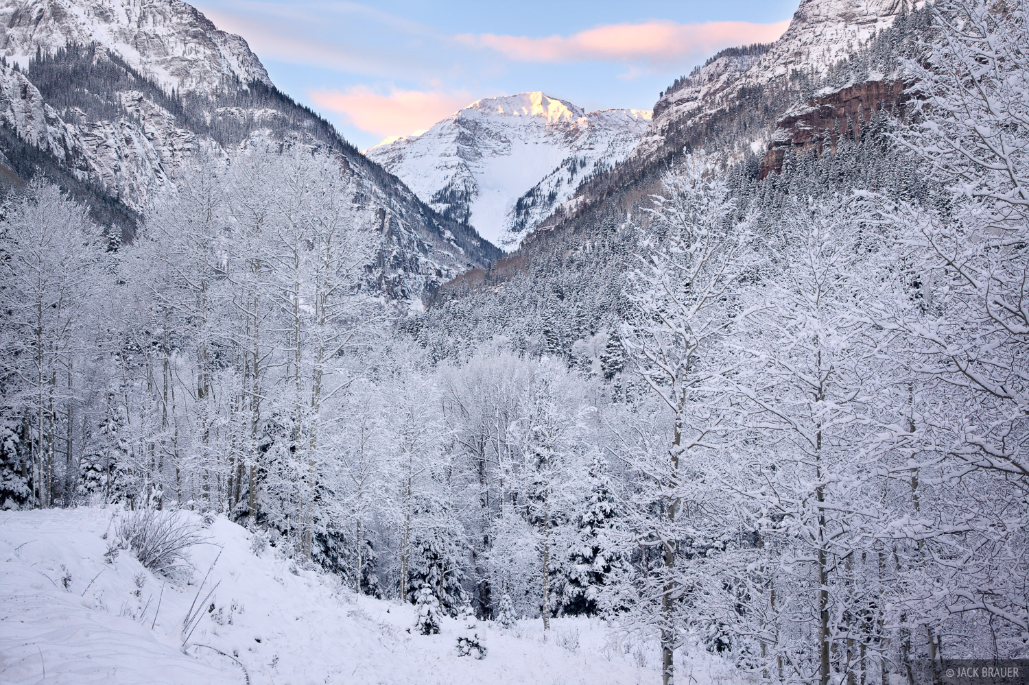 Frosty aspens and U.S. Mountain on a wintery October morning along Camp Bird Roadin the Sneffels Rangeabove Ouray...