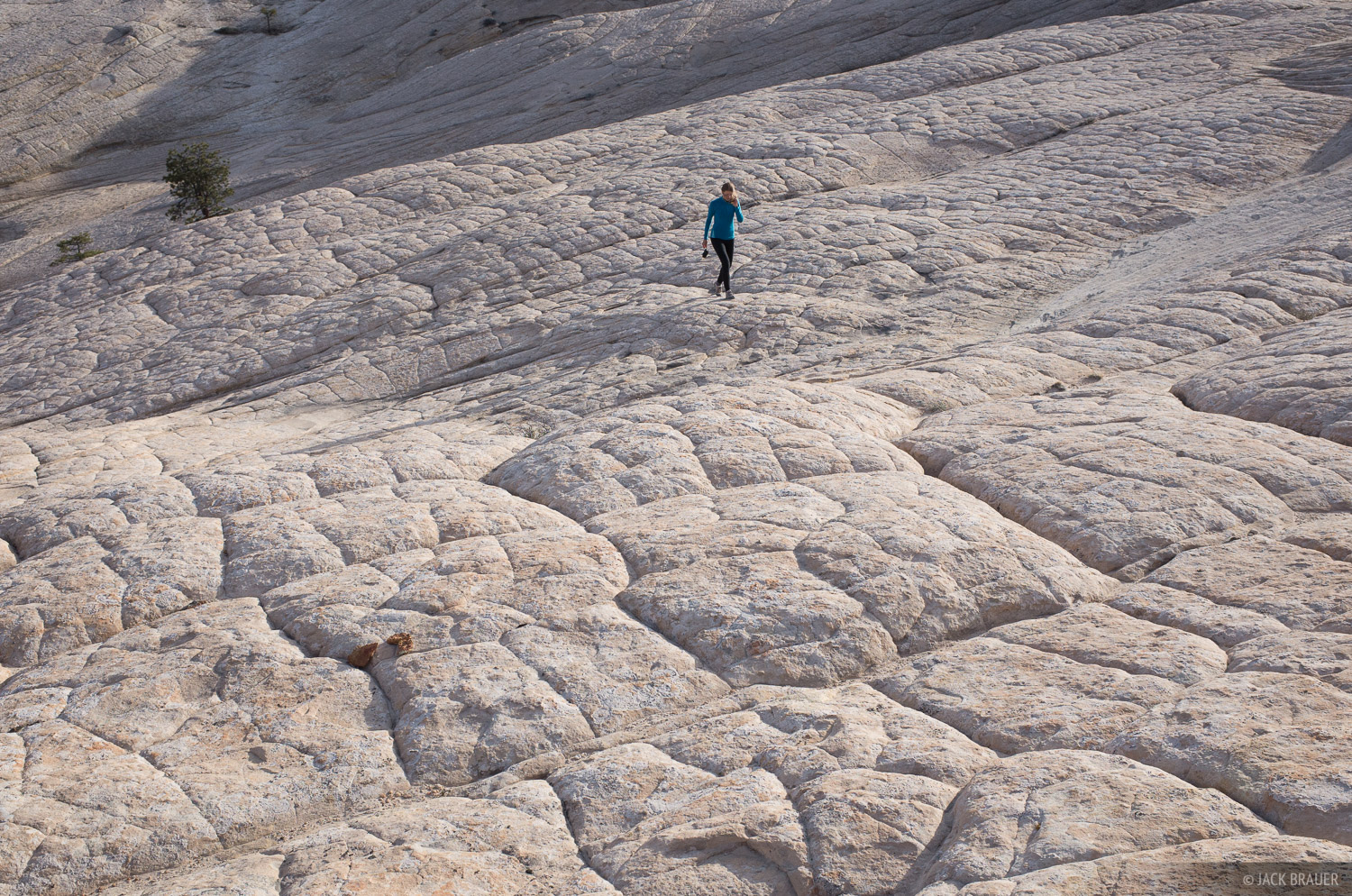 Boulder Mail Trail, Escalante, Escalante National Monument, Utah, Grand Staircase-Escalante National Monument, photo