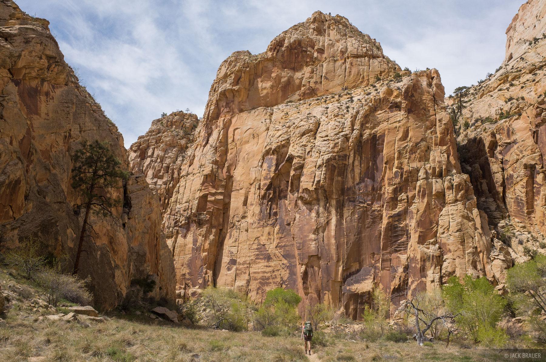 Hiking up the Escalante River canyon.