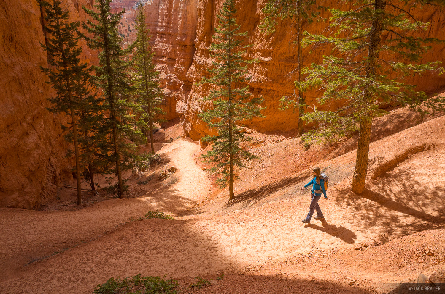 Hiking the Navajo Loop Trail in Bryce Canyon National Park.