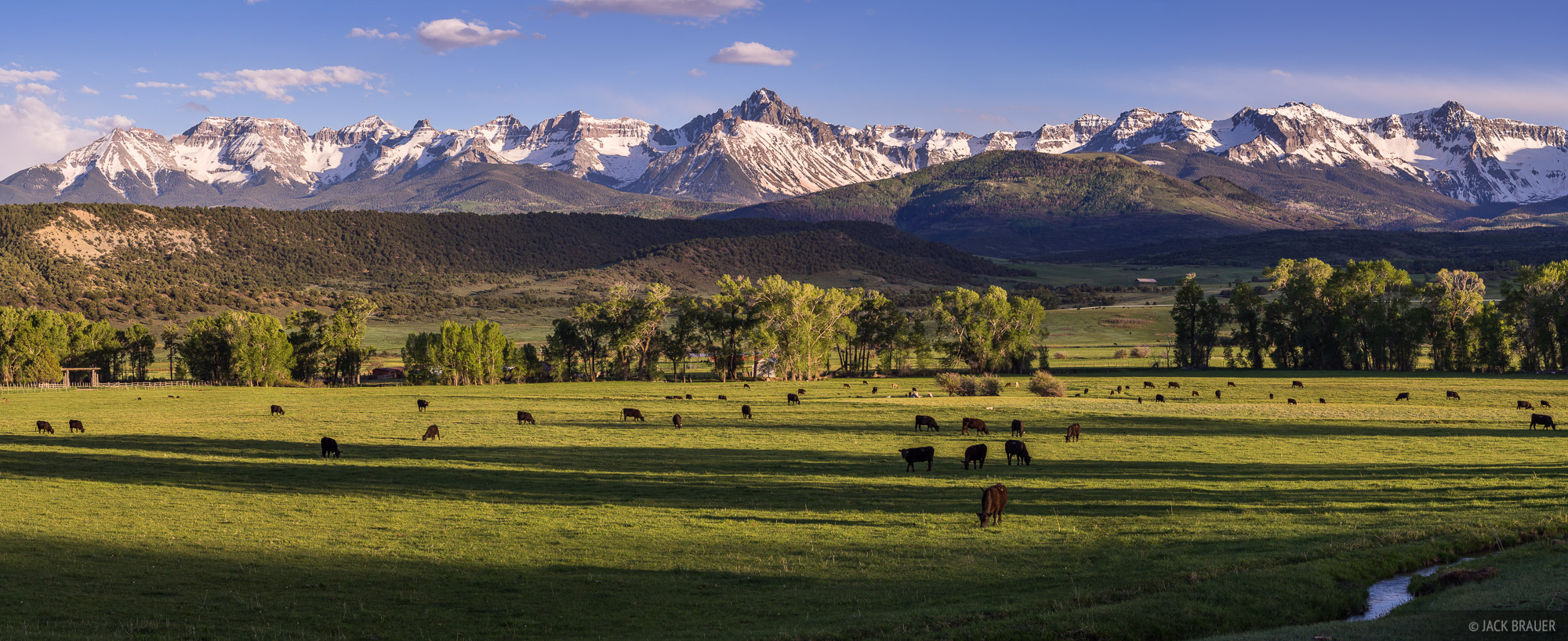 Colorado,San Juan Mountains,Sneffels Range, Pleasant Valley, panorama, cattle, Ridgway, photo