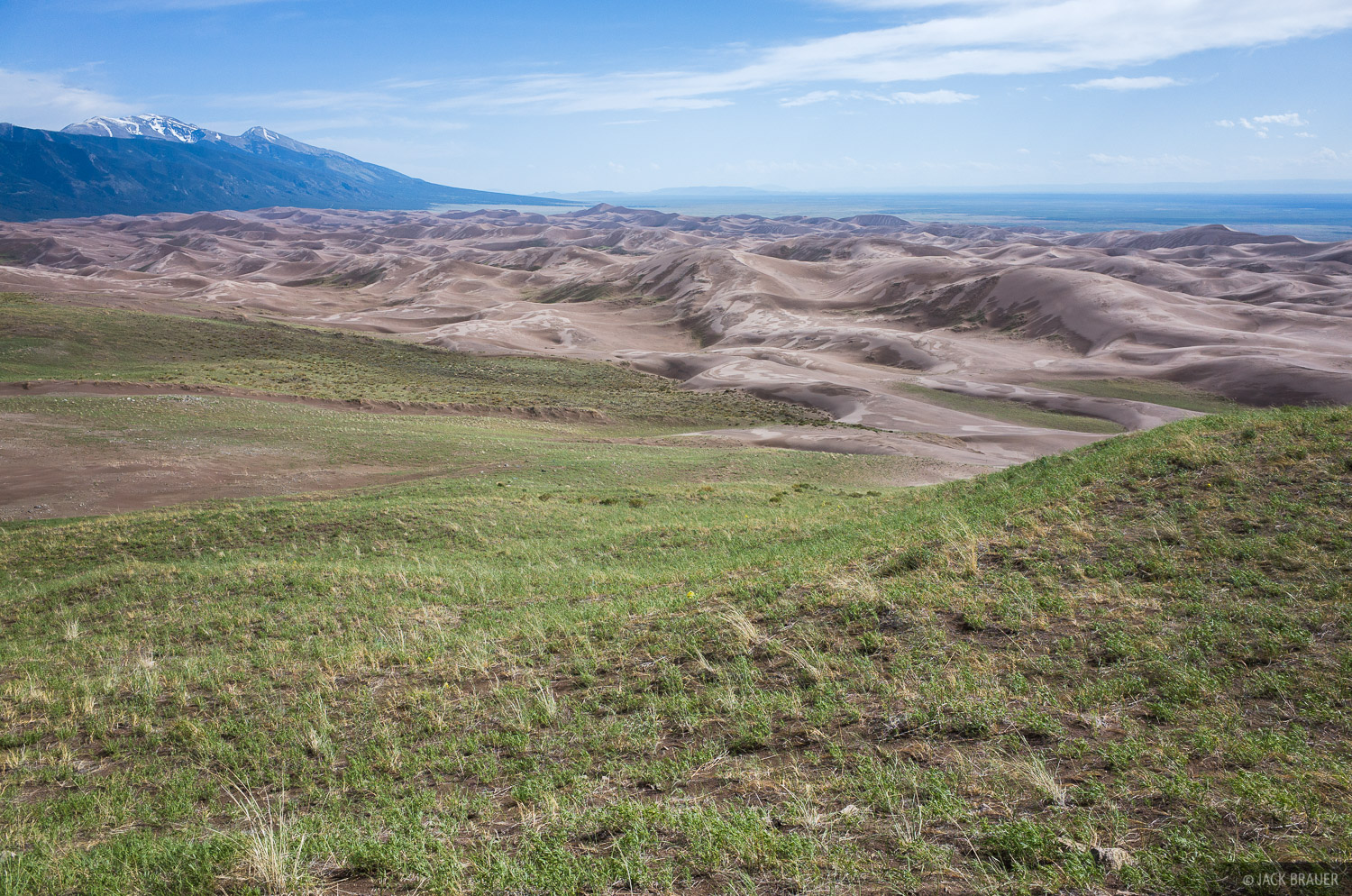 Grassy meadows take root along the northeastern edge of the Great Sand Dunes.