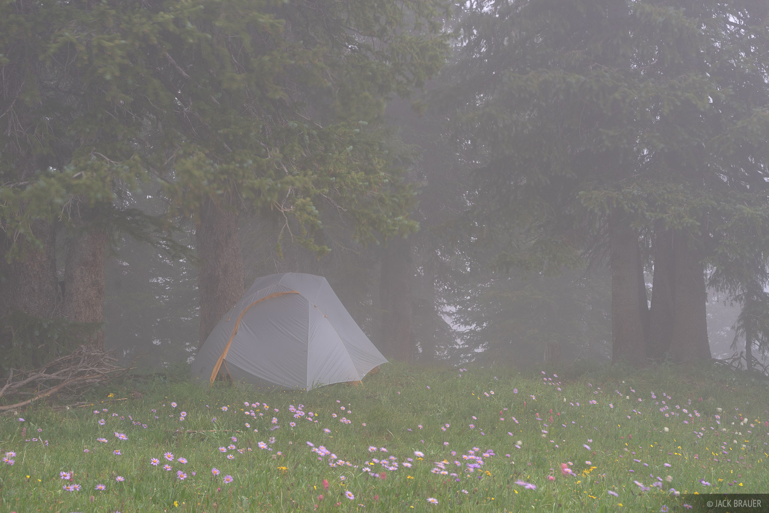 Colorado,San Juan Mountains,tent, photo