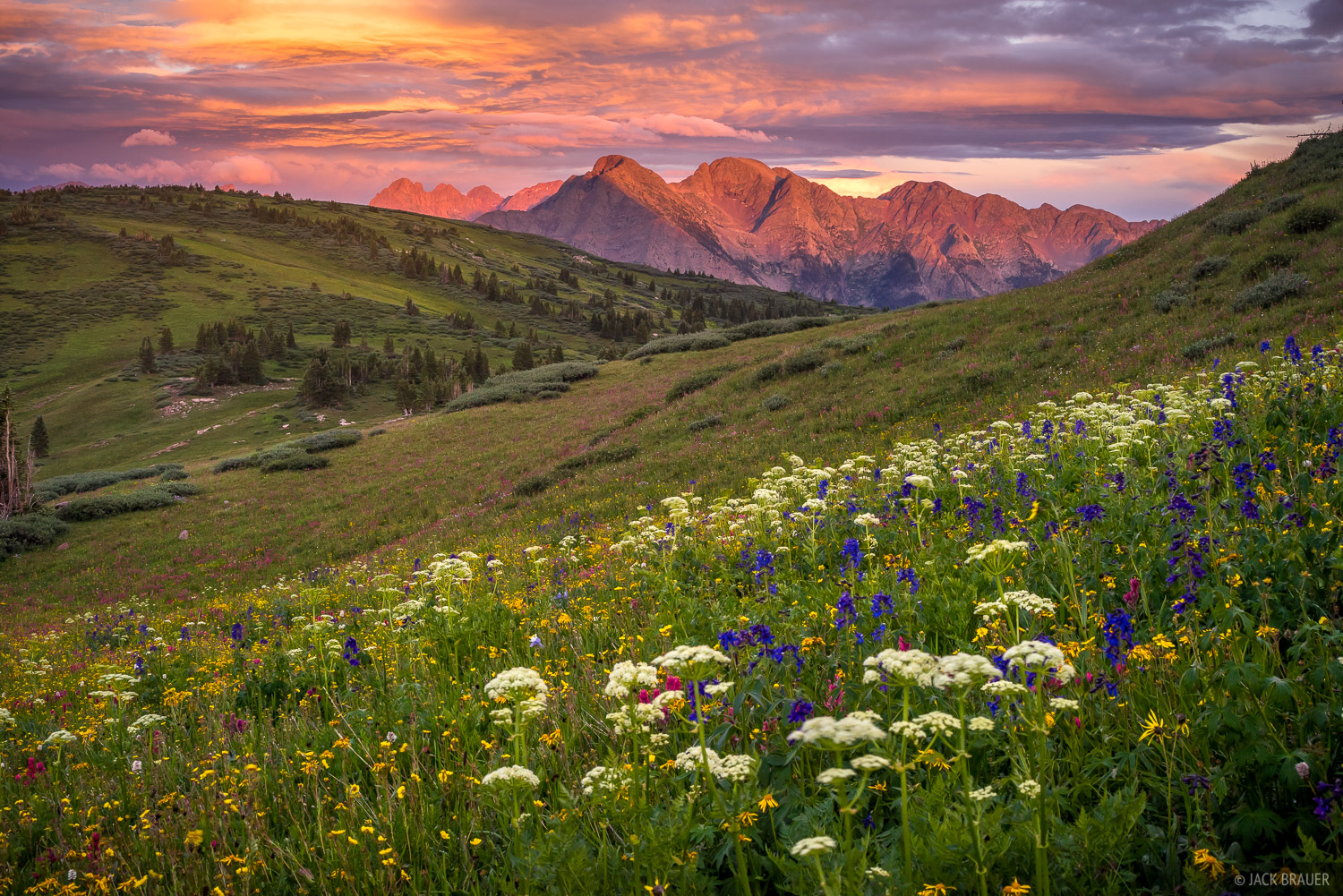 Wildflowers and a spectacular sunset above North Twilight and Twilight Peaks of the West Needle Mountains between Silverton and...