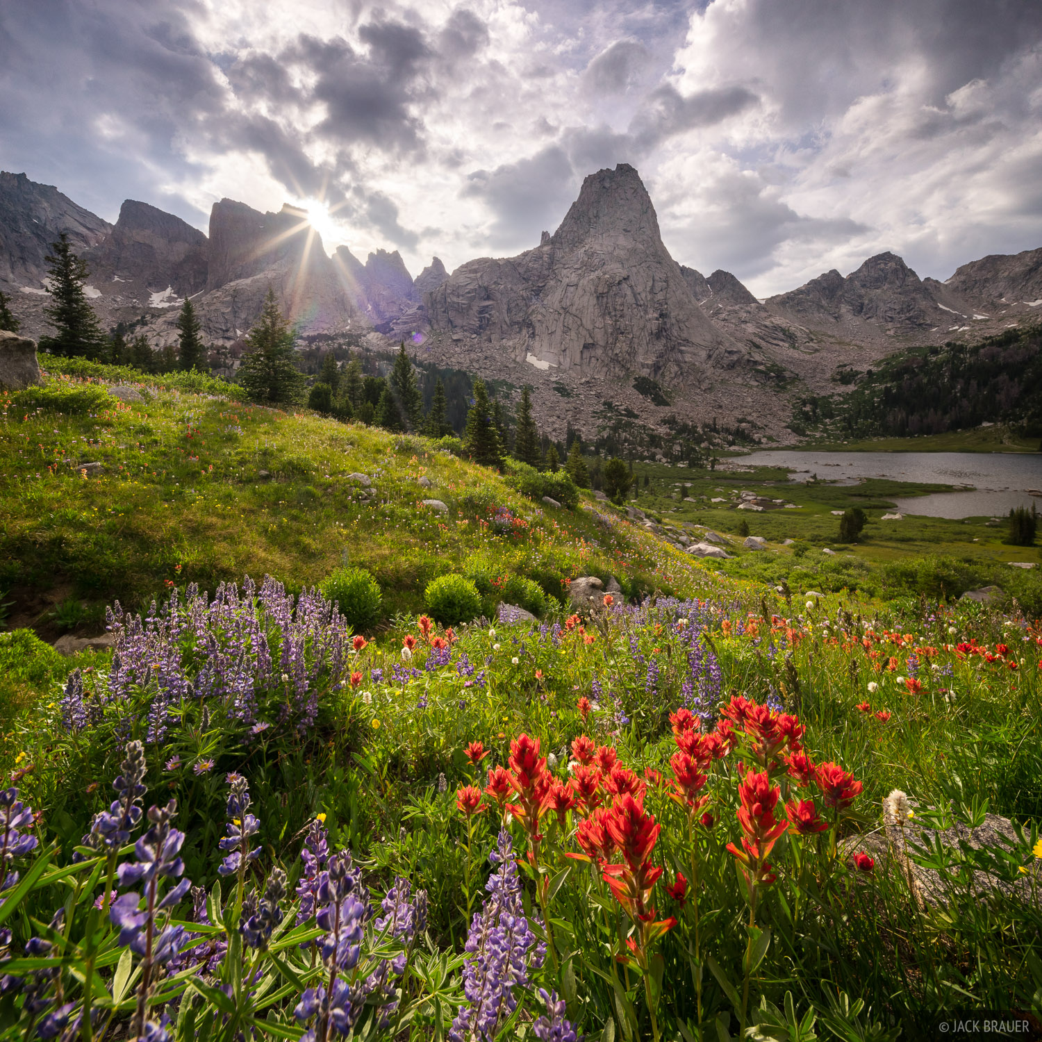 Cirque of the Towers,Pingora Peak,Wind River Range,Wyoming,wildflowers, photo