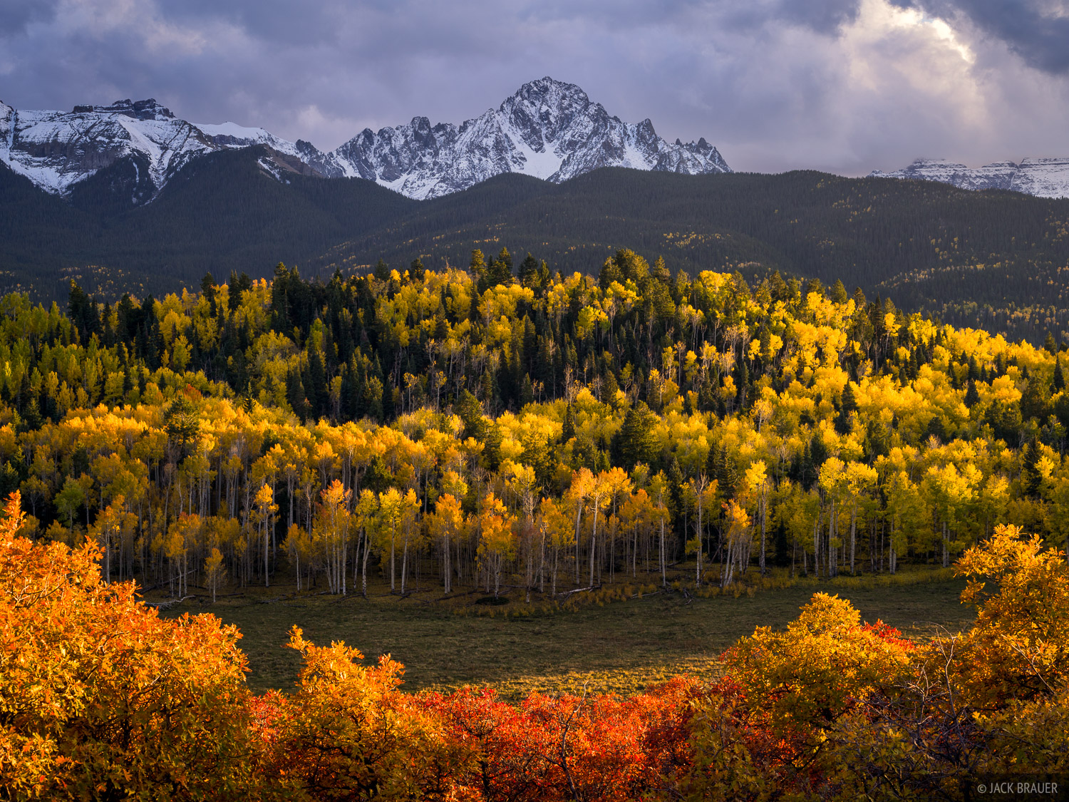 Colorado,San Juan Mountains,Sneffels Range,aspens, Mt. Sneffels, photo