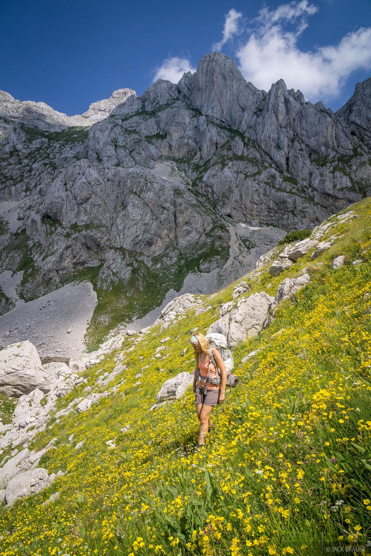 Hiking through wildflowers below Bobotov Kuk.