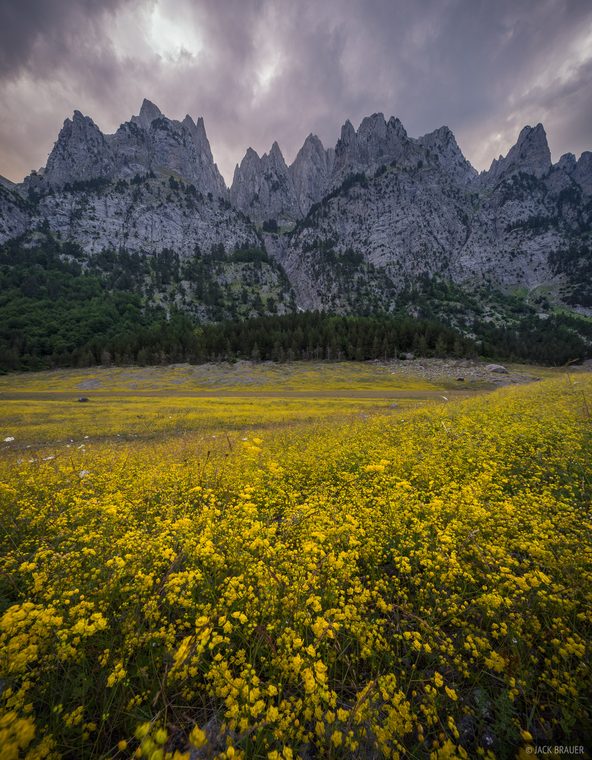 Vast fields of little yellow wildflowers adorn the dried Liqeni Geshtares lakebed below the jagged spires of Karanfili. The spot...