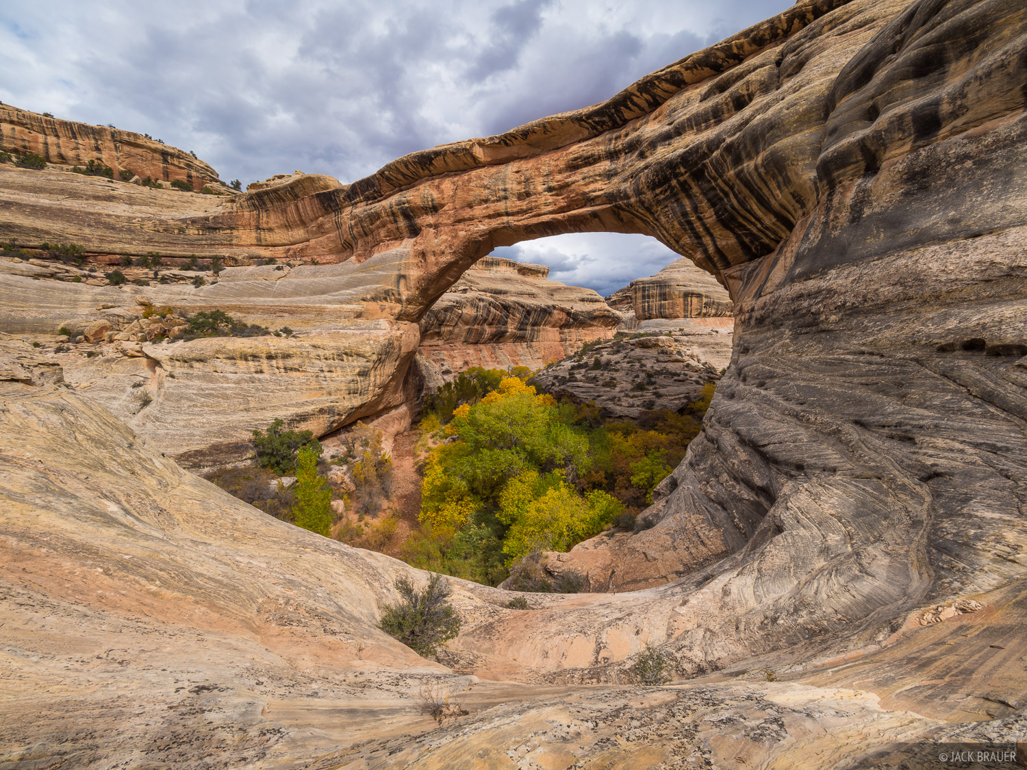 Natural Bridges National Monument, Sipapu Bridge, Utah, White Canyon, photo