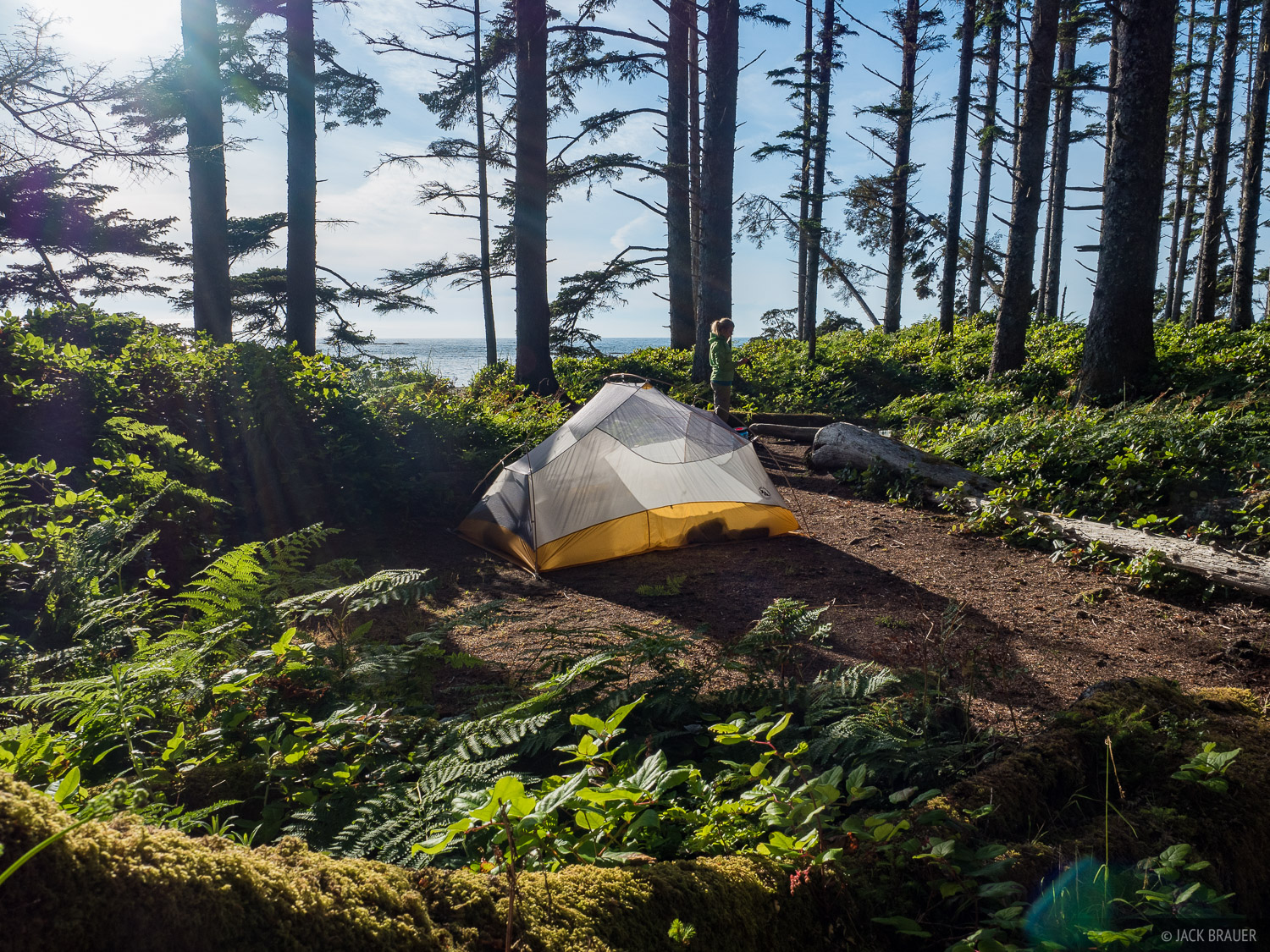 Olympic Peninsula, Washington, tent, Olympic National Park, photo