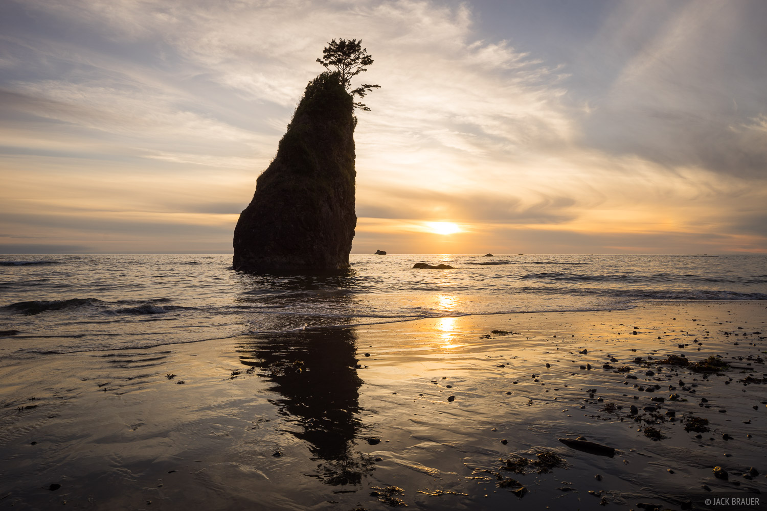 Olympic Peninsula, Washington, Olympic National Park, photo
