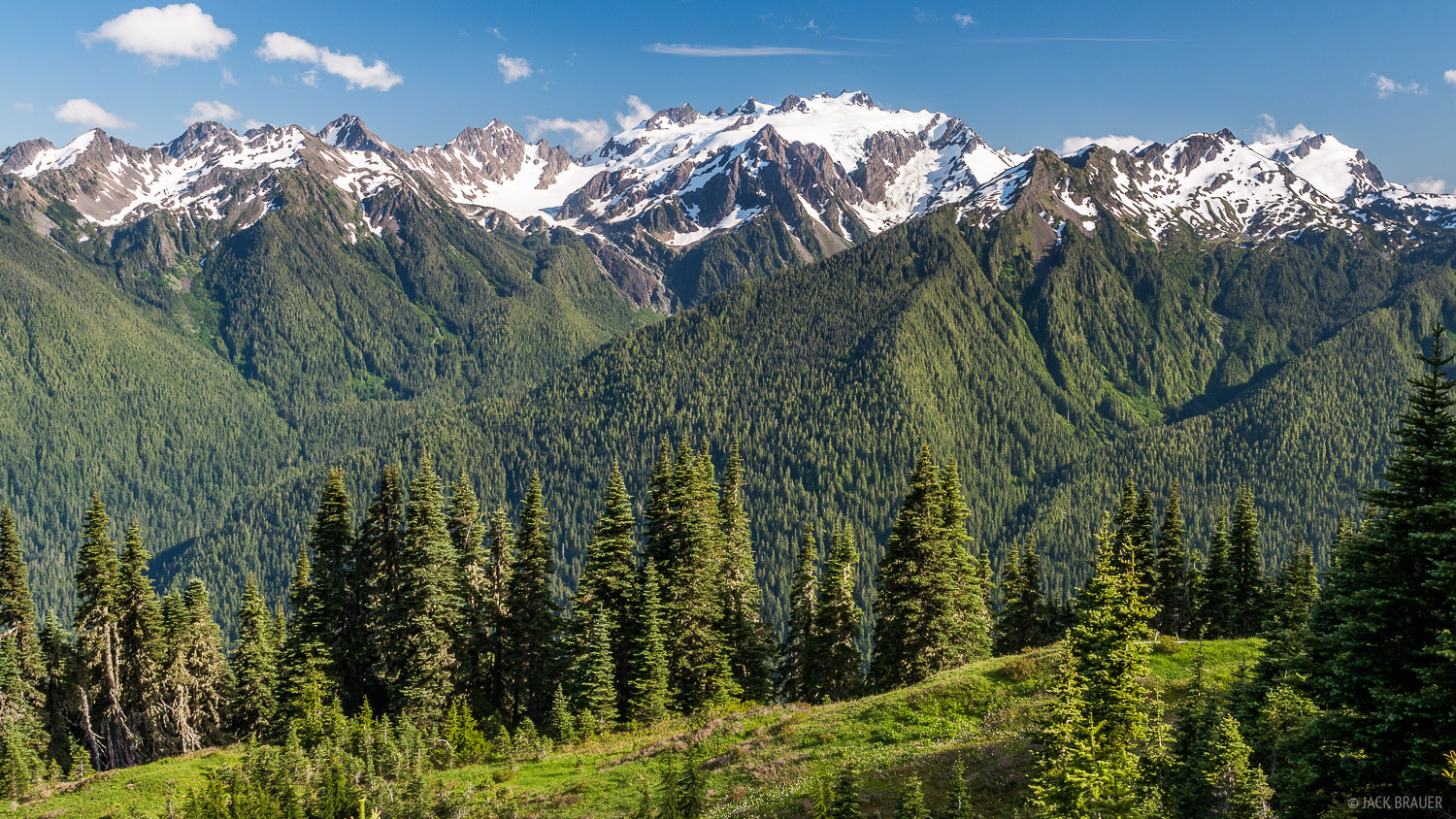 Mount Olympus (7,980 ft / 2,432 m) as seen from the High Divide, Olympic National Park, Washington.