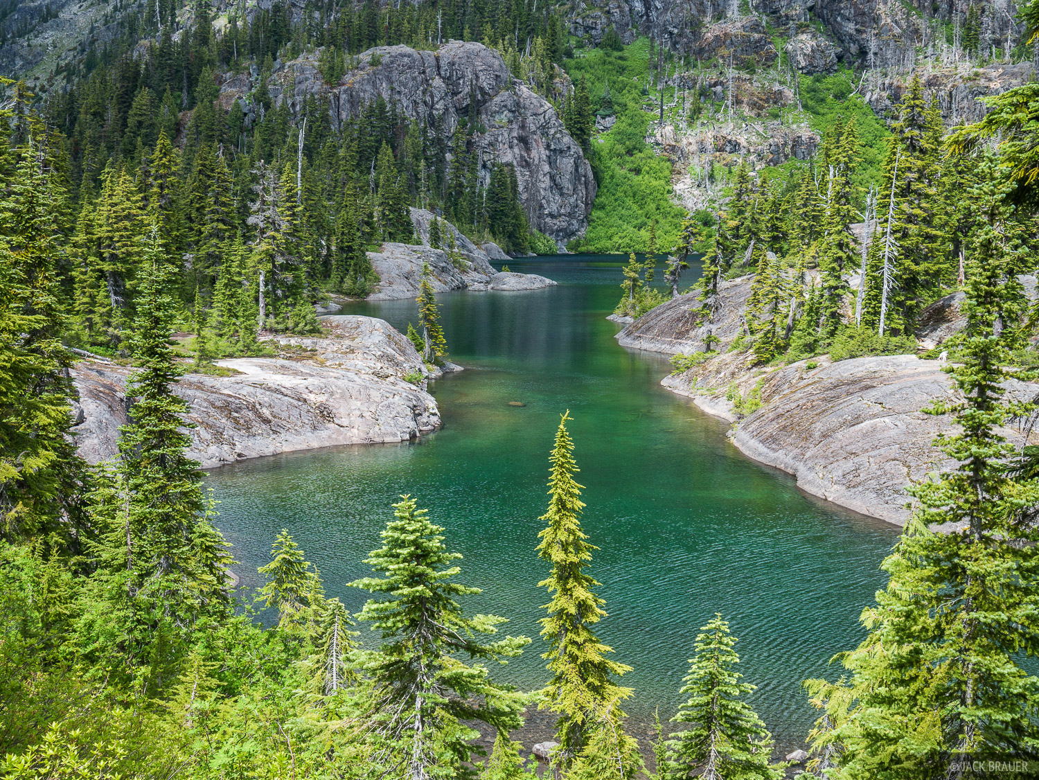 A kaleidoscope of greens at Spectacle Lake.