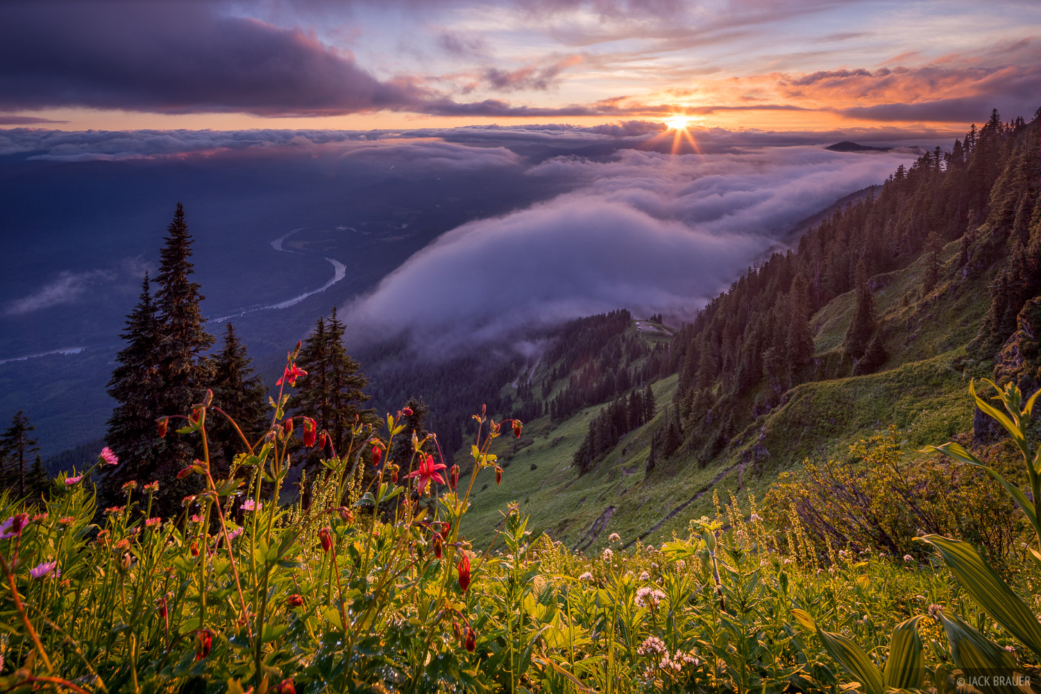 Sauk Mountain, Washington, wildflowers, sunset, July, Cascades