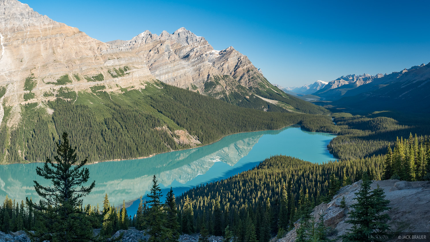 The classic viewpoint view of Peyto Lake - July.