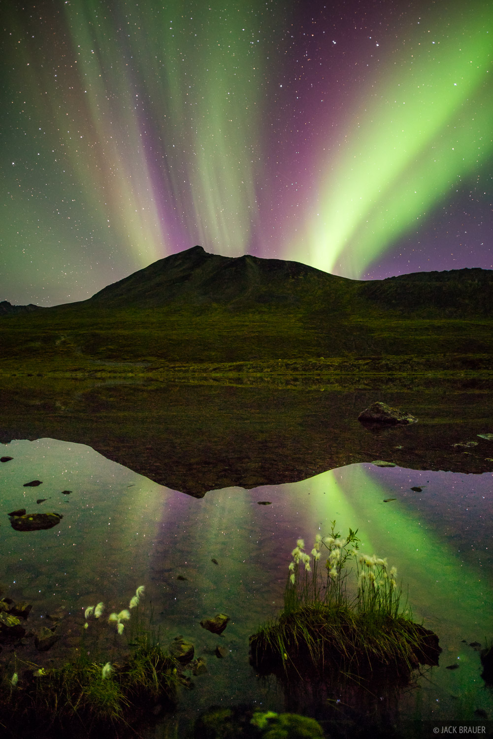 Canada, Divide Lake, Tombstone Territorial Park, Yukon, aurora, reflection, northern lights, Tombstone Range, photo