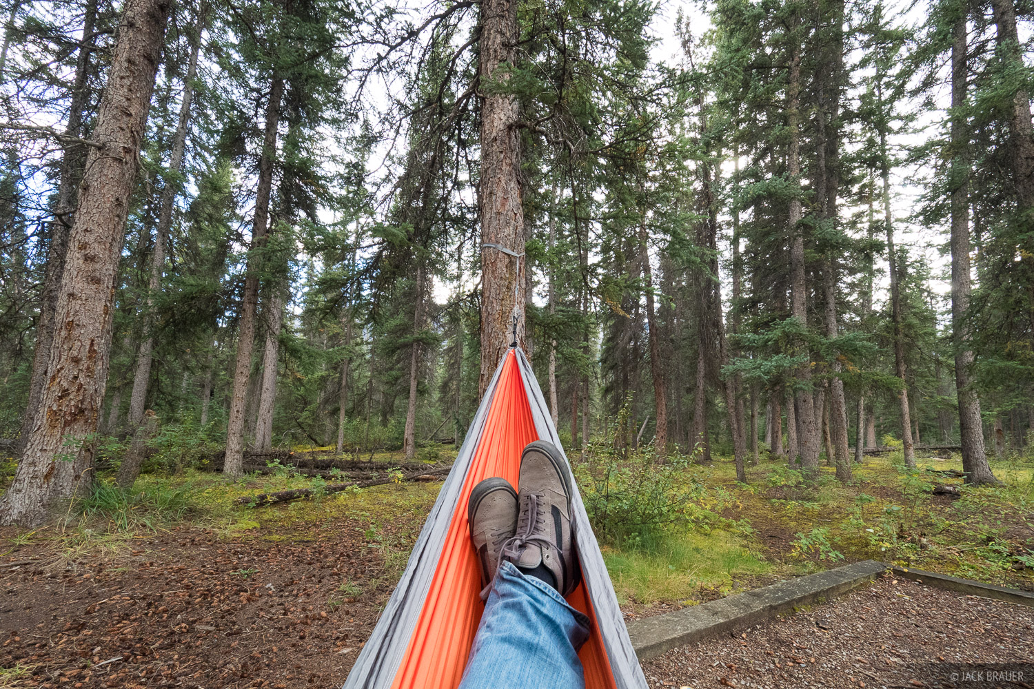 Alberta, Canada, Jasper, Snaring River Campground, hammock, photo