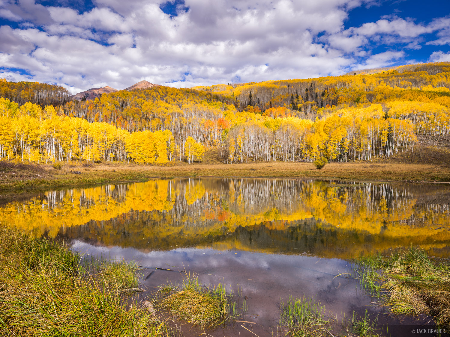 Colorado, Elk Mountains, Kebler Pass, October, aspens, autumn, fall