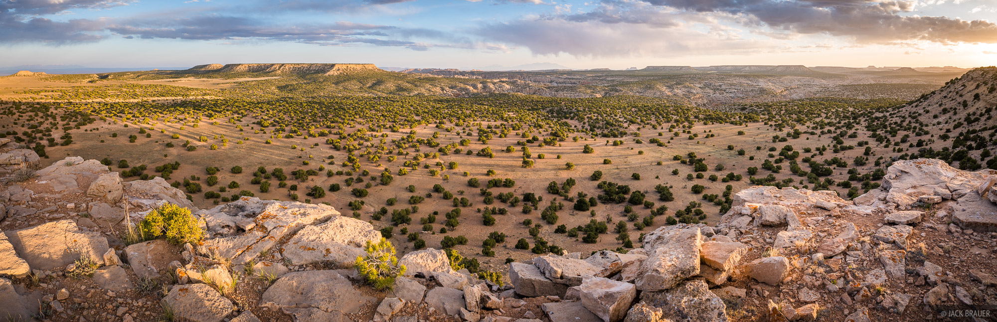 A vast panoramic view overlooking the heights of the San Rafael Swell. La Sal Mountains are way off on the left horizon; the...
