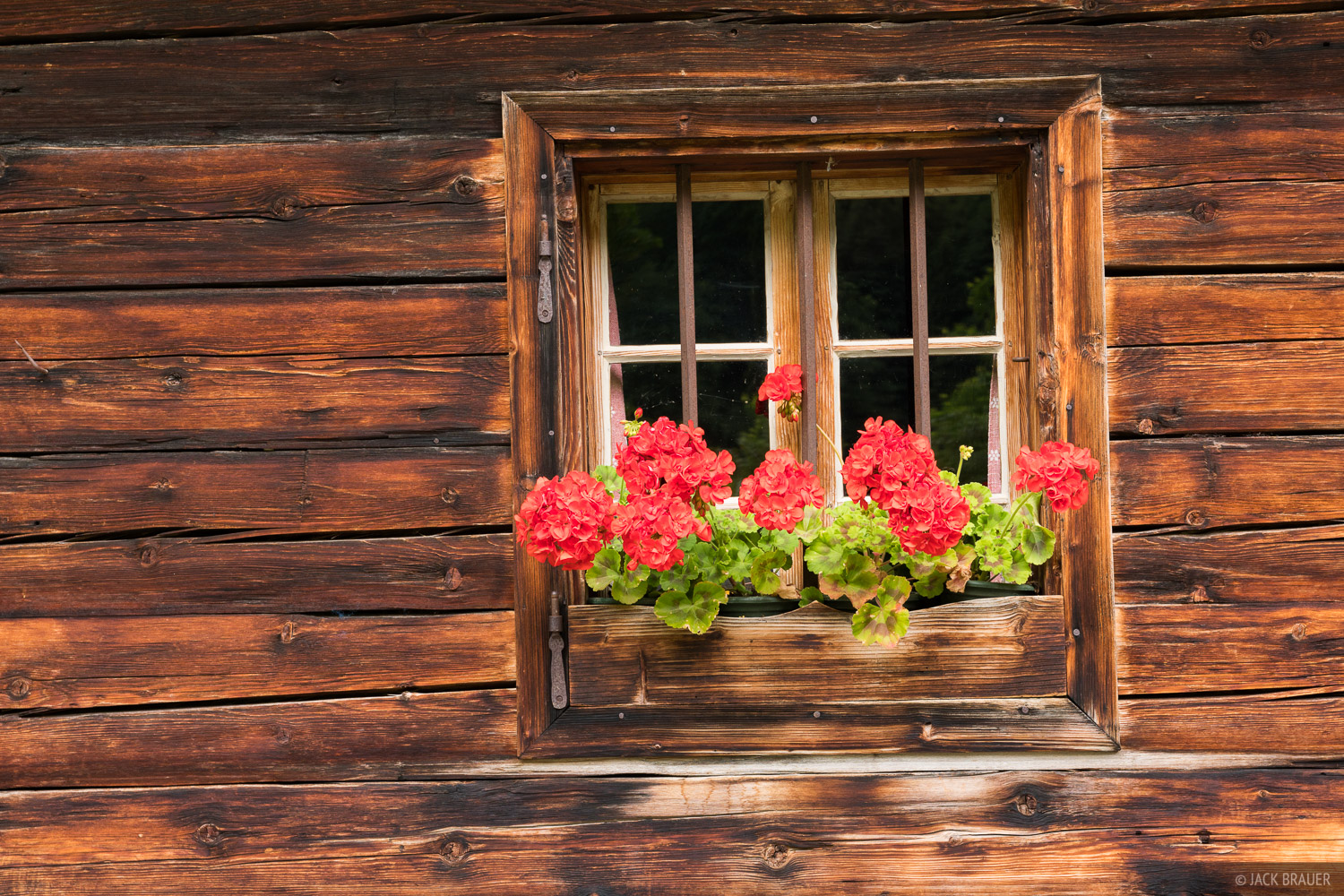 Austria, Engalm, Karwendel, Alps, flowers, window, photo