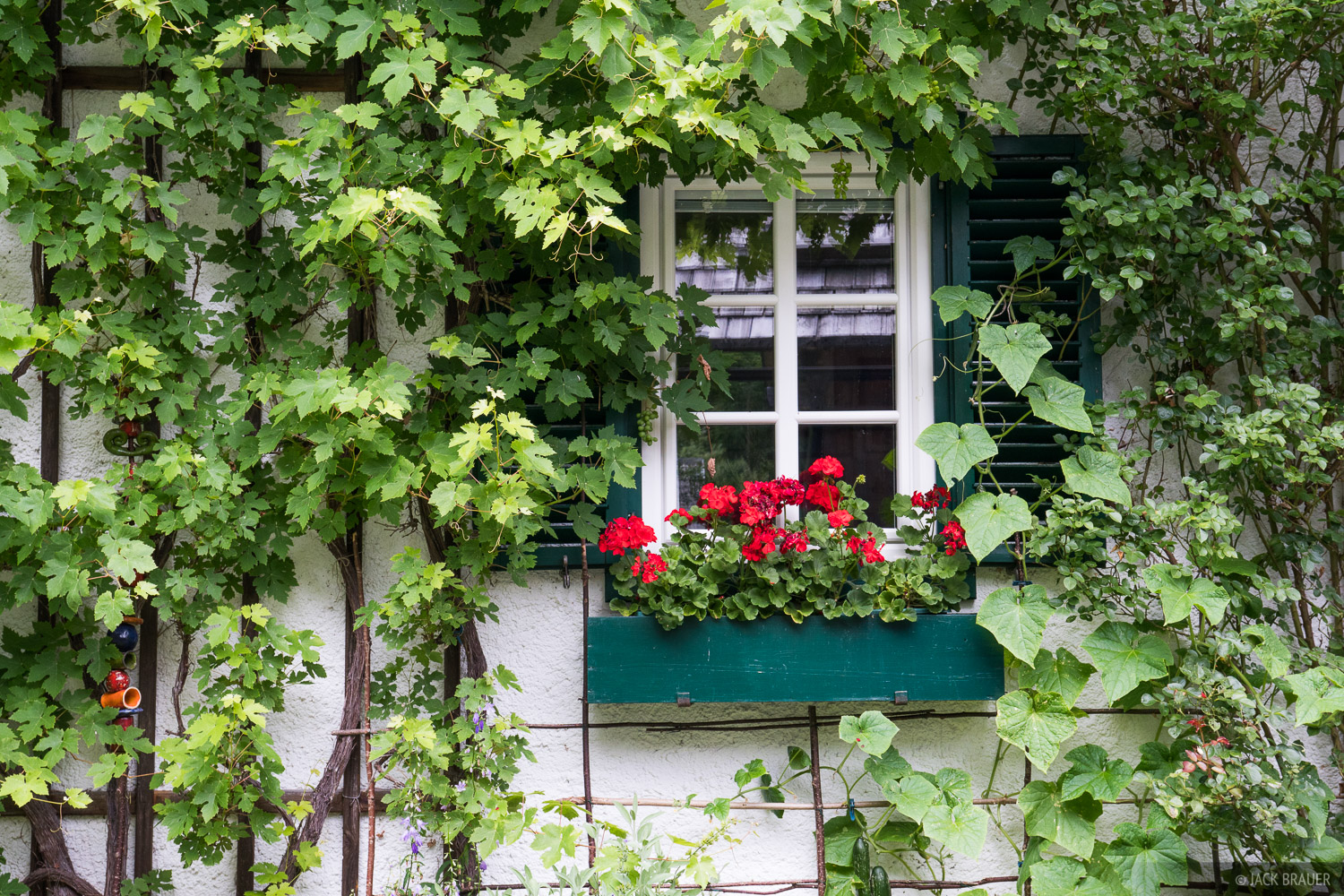 Another obligatory photo of a quaint window surrounded by ivy, on the outskirts of Hallstatt.