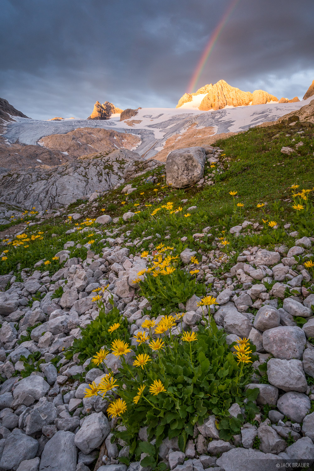 Austria, Dachstein, Hallstätter Gletscher, wildflowers, sunrise, glacier, rainbow, photo