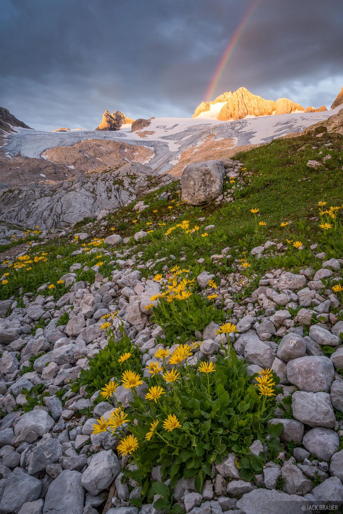 Austria, Dachstein, Hallstätter Gletscher, wildflowers, sunrise, glacier, rainbow