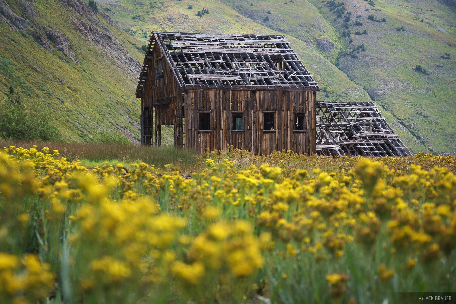 Animas Forks, Colorado, San Juan Mountains, mine, wildflowers, California Gulch, photo