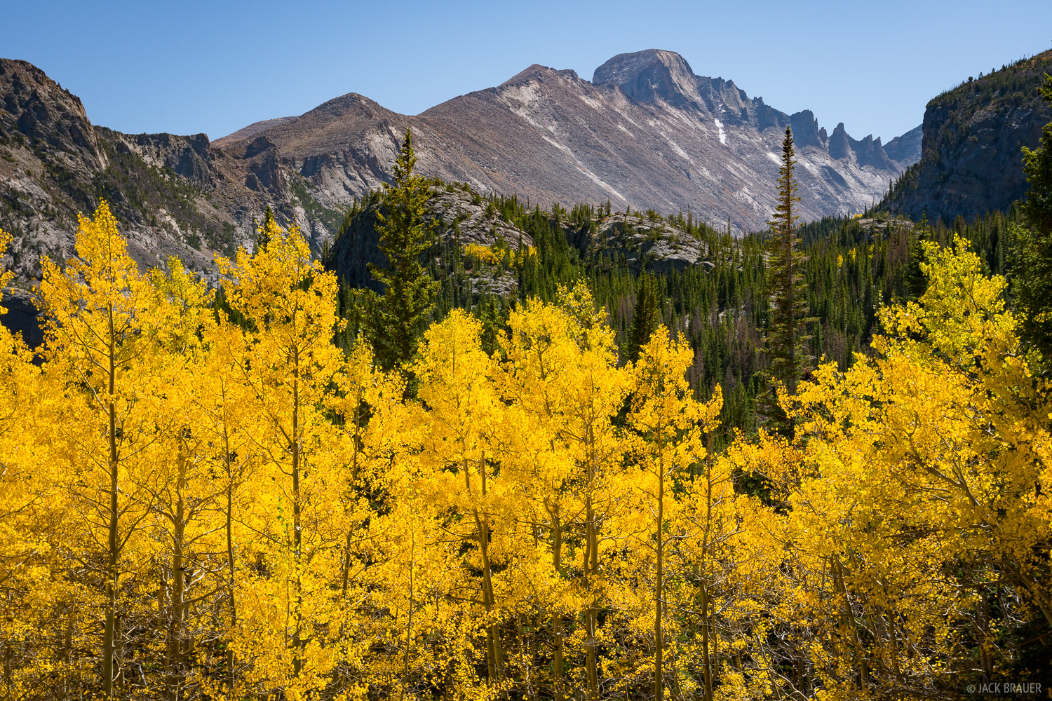 Colorado, Longs Peak, Rocky Mountain National Park, aspens, photo