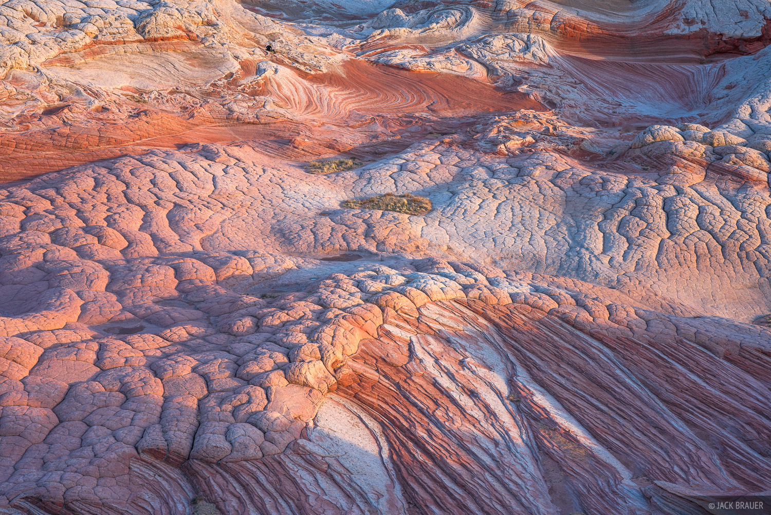 Arizona, Utah, Vermilion Cliffs National Monument, White Pocket, photo