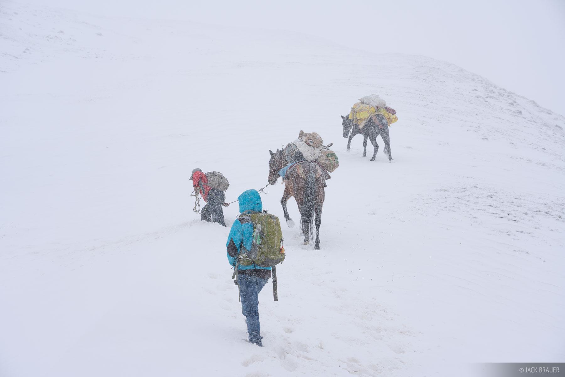 Abra Palomani, Ausangate, Cordillera Vilcanota, Peru, South America, horse, photo