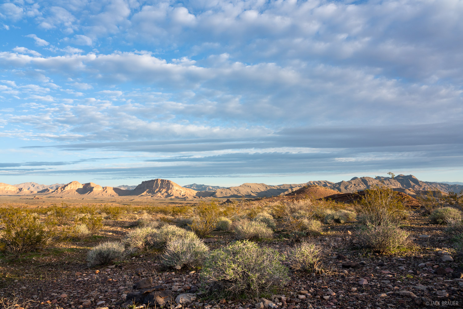 Morning in the Mojave Desert near Lake Mead National Recreation Area.