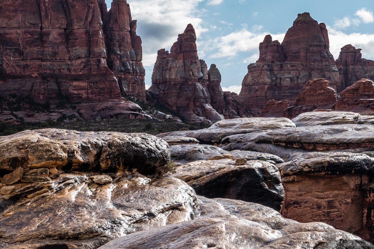 Wet sandstone in the Needles District after a heavy rain in May.