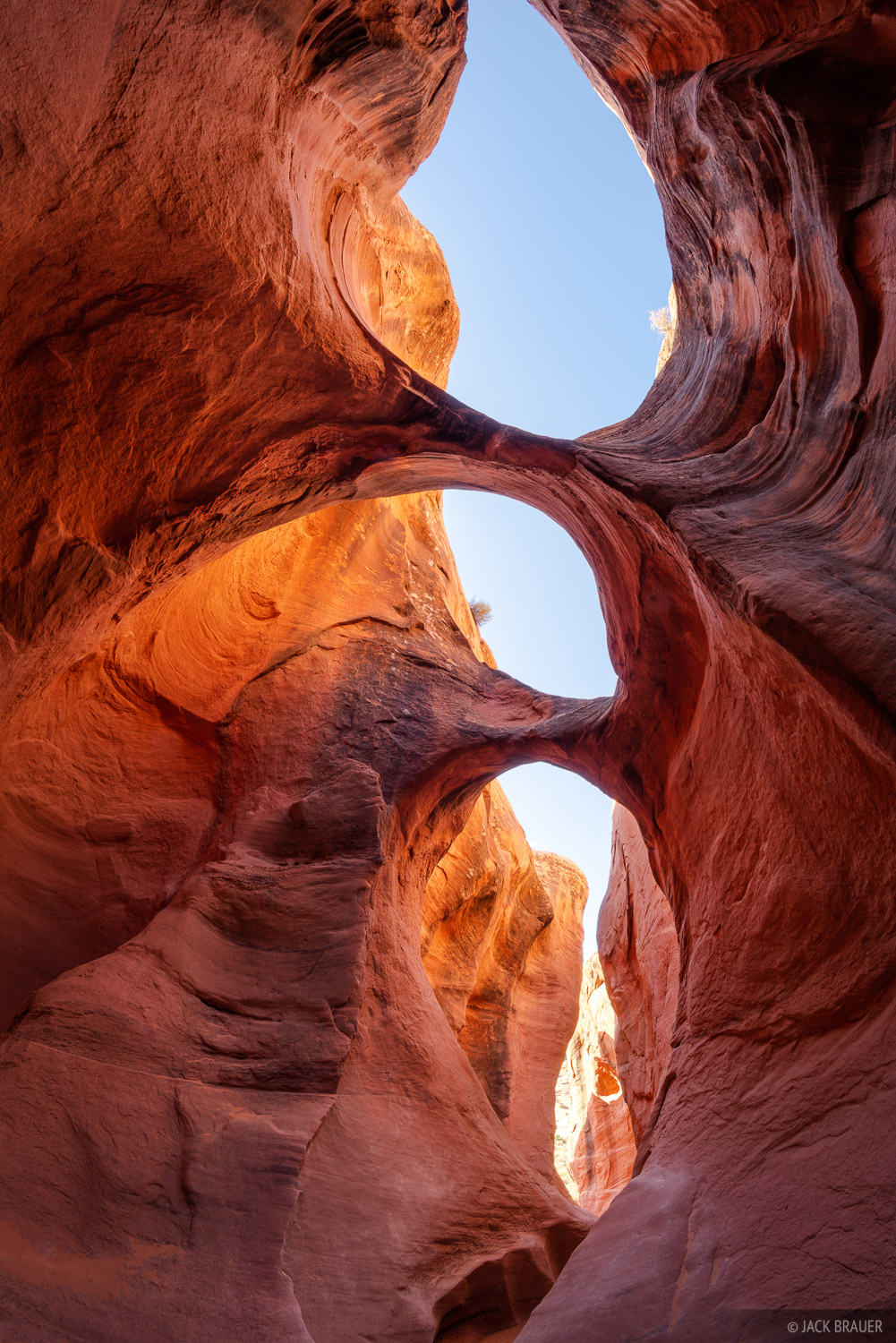 Grand Staircase - Escalante National Monument, Peakaboo Canyon, Utah, Escalante, photo
