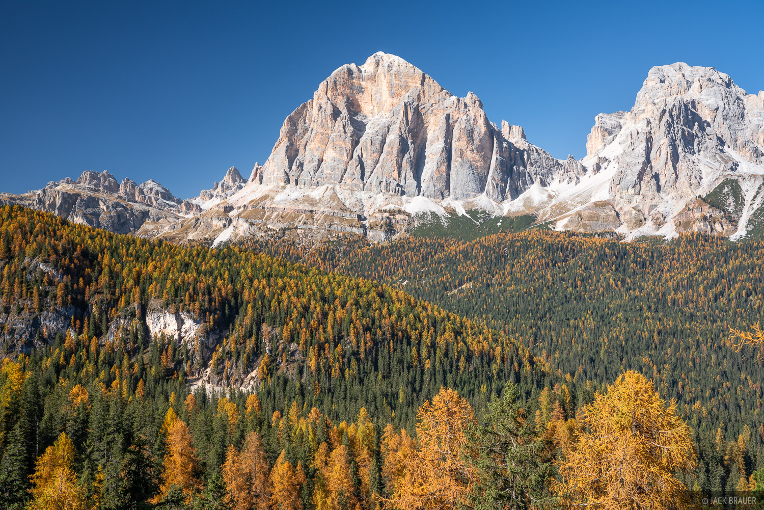 Tofana de Rozes above a forest of larch trees.