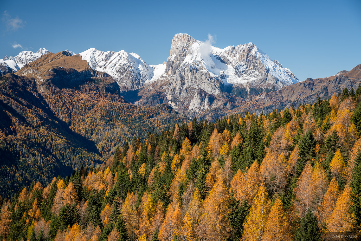 Marmolada rises behind a valley of larch trees.