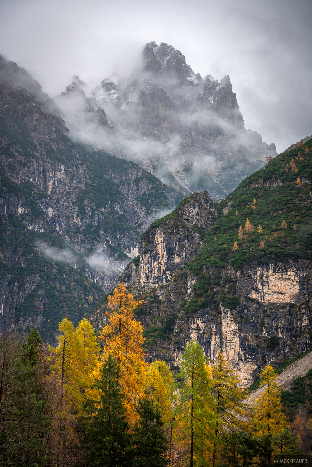 Dolomites, Italy, Parco Naturale delle Dolomiti Fruilane, larch, November, Alps, photo