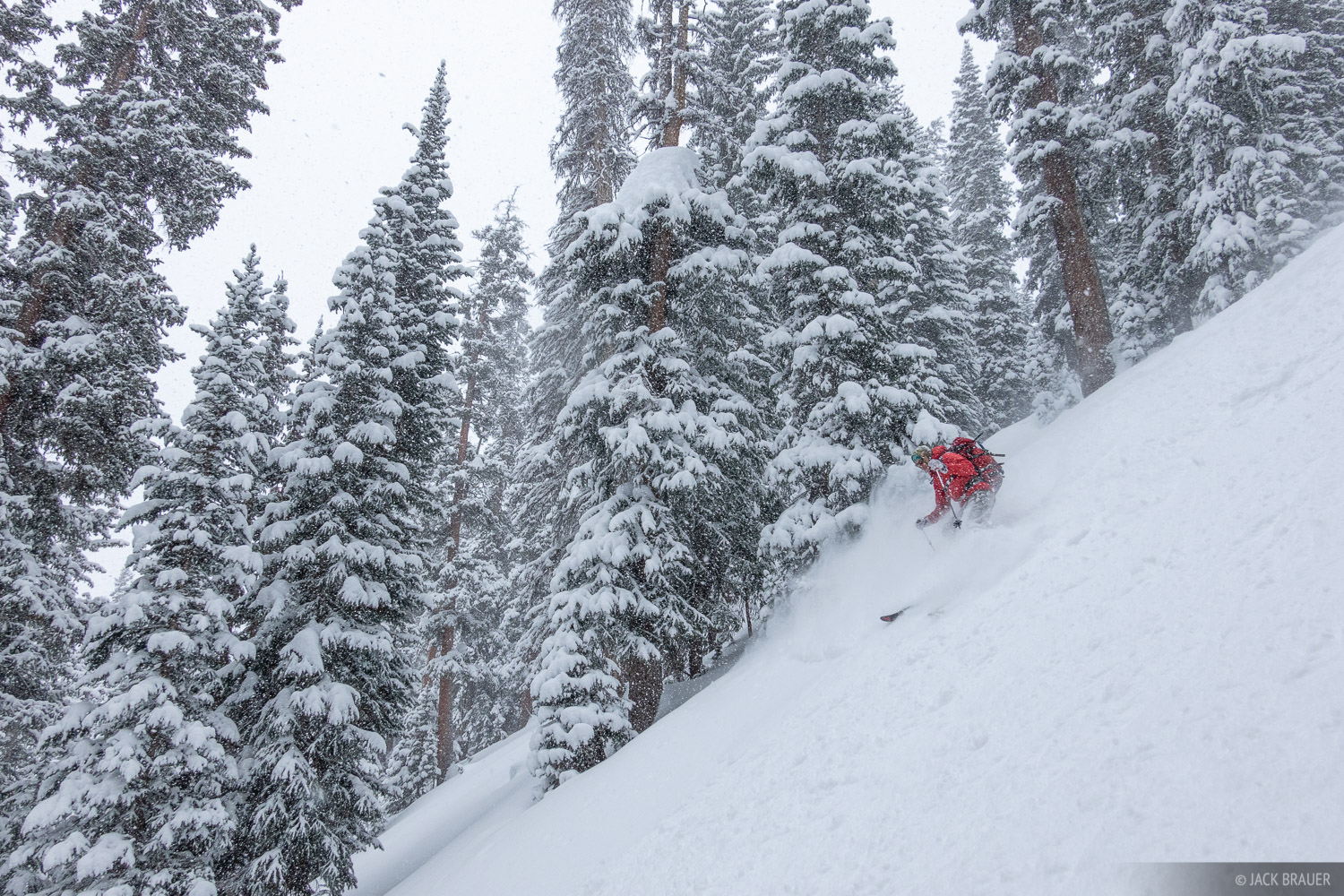 Tom Kelly skis deep powder in December.